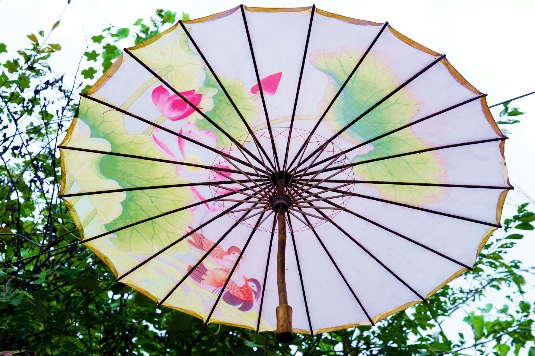 贺州玉石林油纸伞节